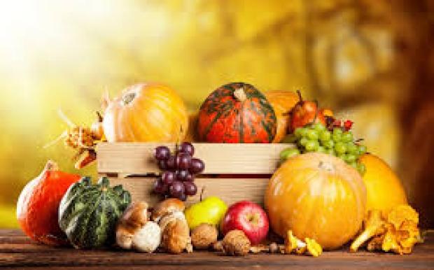11月の季節メニューを更新しました。